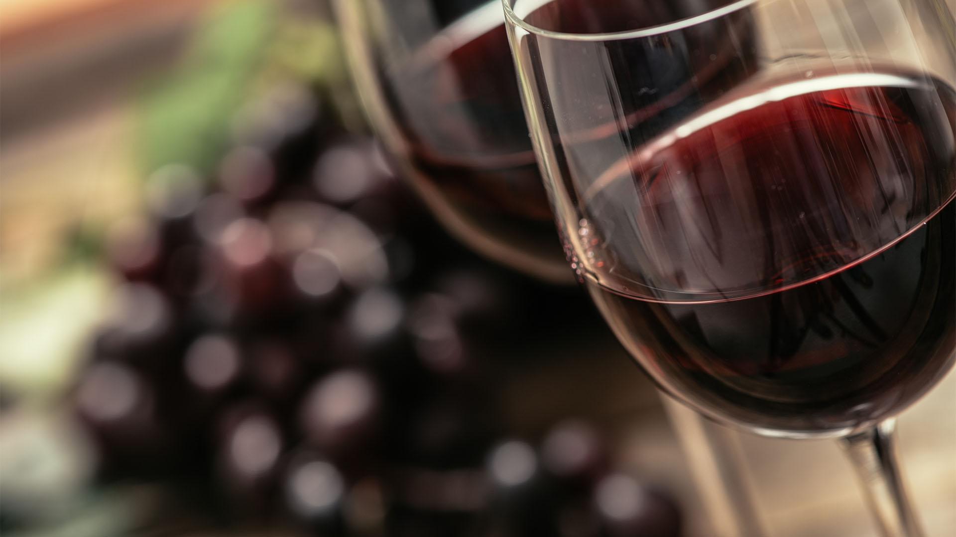 """Image result for vino"""""""