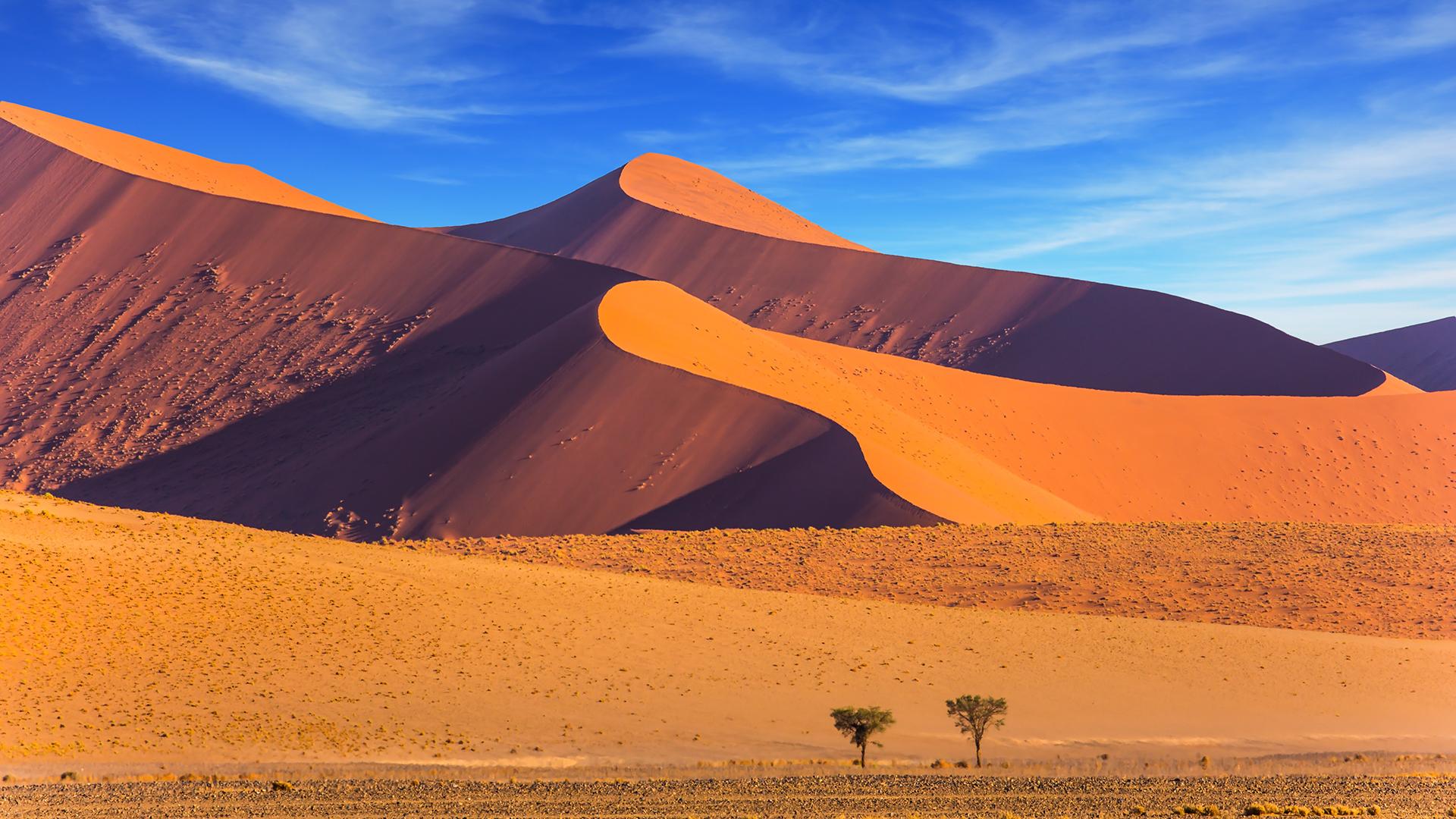 Cuando se trata de pura belleza natural, pocos países de África se acercan a Namibia. El desierto de Namib es la estrella del país, aunque pocos lugares del sur de África pueden competir con la fauna del extraordinario Etosha National Park, uno de los más grandes del mundo, con una extensión de 22.270 km²