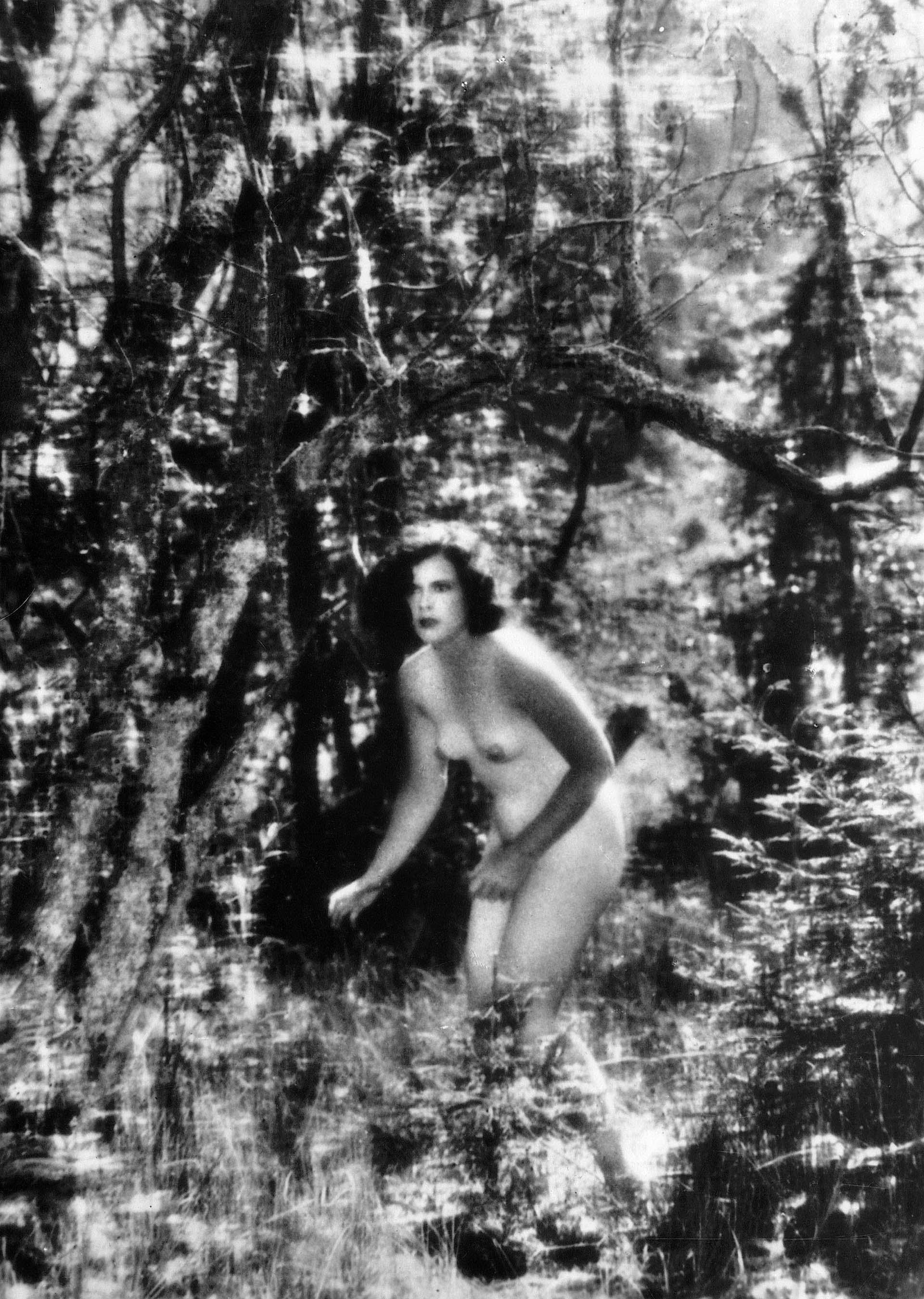 Actrices Porno Americanas De Los Años 80 desnudos en el cine: actrices y actores que se animaron a