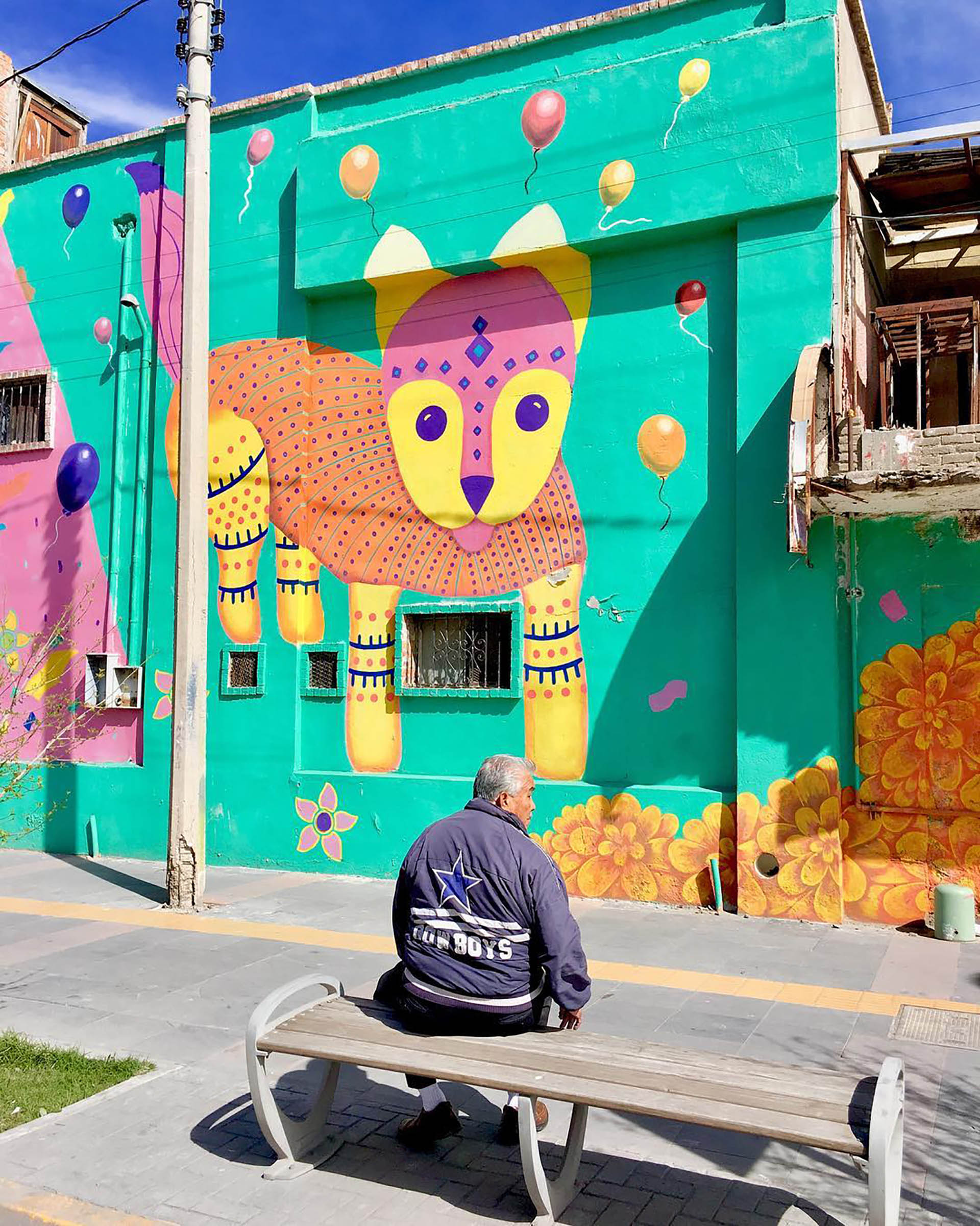 En el barrio dinámico transitan tanto punks y hippies como jóvenes profesionales. Allí se encuentra también la Zona Rosa, un lugar gay-friendly, con bulliciosas calles, bares con terraza y animadas discotecas