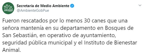 La Secretaría de Medio Ambiente de Puebla informó que varios perros fueron secuestrados y eran objeto de aparente maltrato por parte de una señora (Foto: Twitter/AmbienteGobPue)