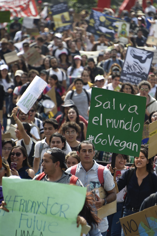Cientos de jóvenes marcharon en Ciudad de México (AFP)