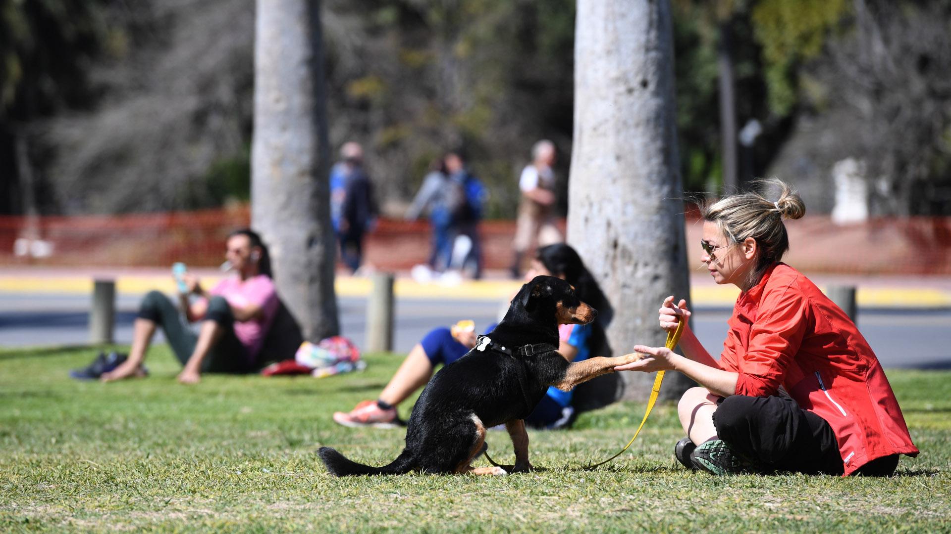 Los perros también formaron parte del festejo de la primavera para estar al aire libre y disfrutar de un día soleado