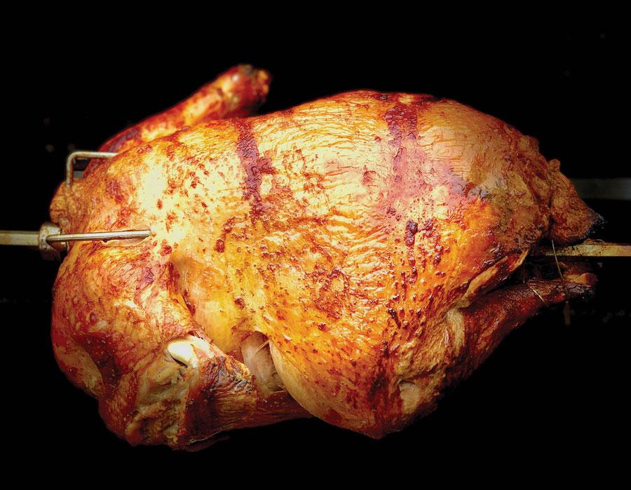 HM-2-Roast_Turkey_On_A_Spit-9516