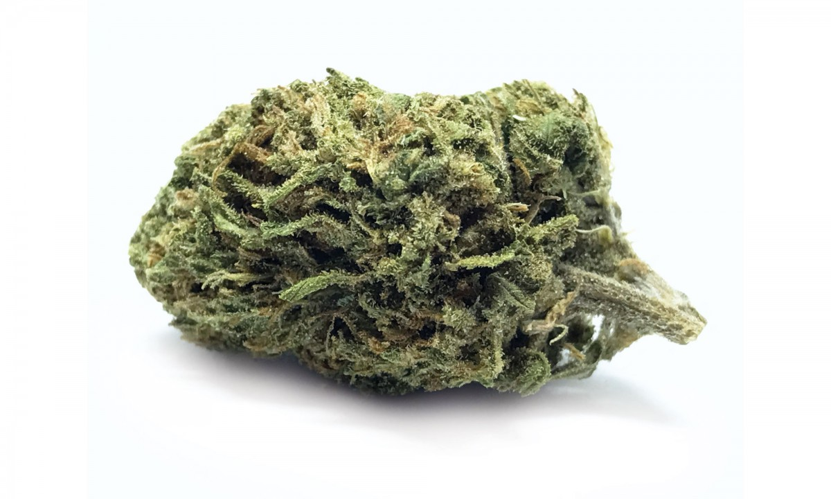 Headband_Mountain-Girl_Strain-Picks