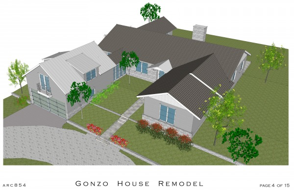 Image Gonzo House Remodel w ...