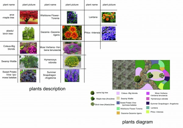 Image Plants and Flowers types