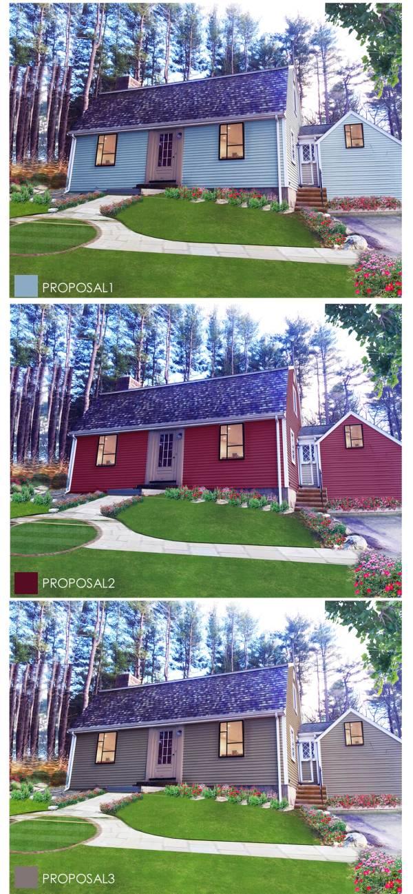 Image Color Proposals