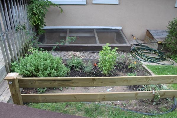 Image Herb garden now?