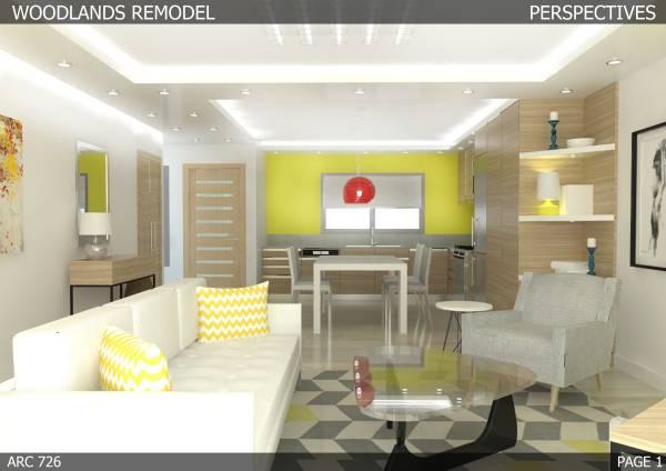 Image Living room - Kitchen