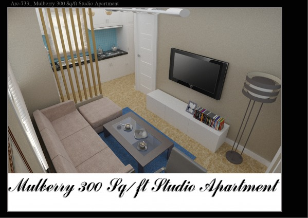 other designed by qarch team mulberry 300 sq ft studio. Black Bedroom Furniture Sets. Home Design Ideas