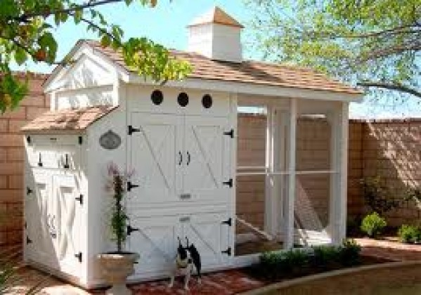 Image Recommended chicken-house