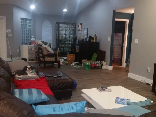 Image den space view from couch