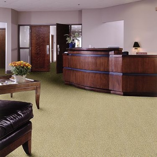 Image Denver carpet cleaning
