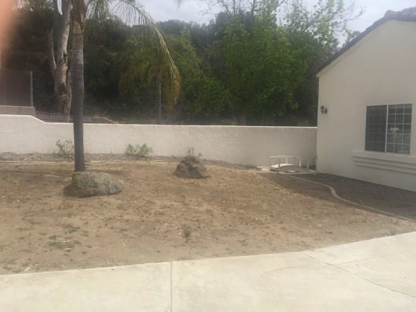 Image Front yard makeover (0)