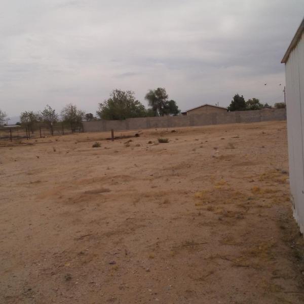 Image Landscape Oasis in Ari... (0)