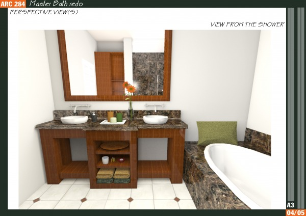Image Master Bath redo (2)
