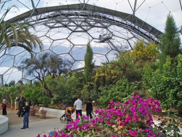 Image Inside the Biodome- th...
