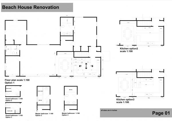 Image Beach House Renovation (1)