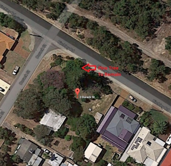 Image Tree Location