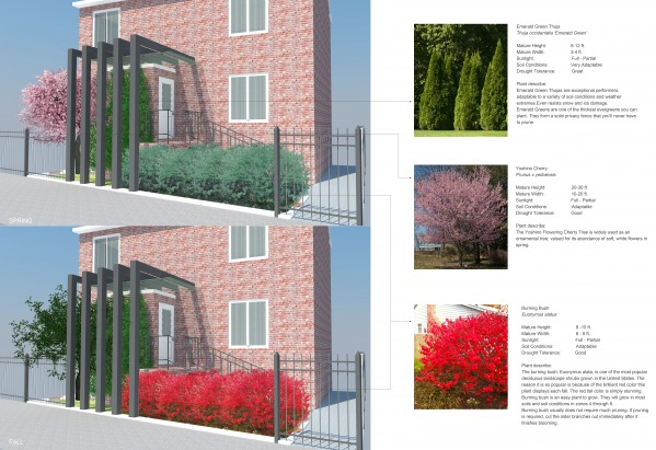 Image Planting design (easy ...