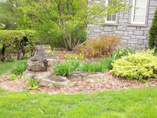 Image Front yard garden 1