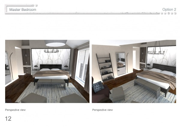 Image Perspective view / Opt...