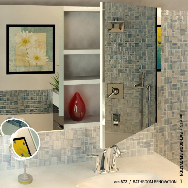 Image Bathroom renovation (0)