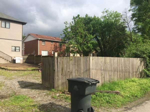 Image Back yard improvement ... (0)