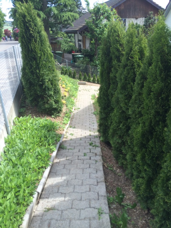 Image path from parking to t...