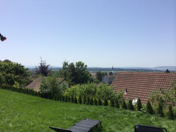 Image new green garden area ...