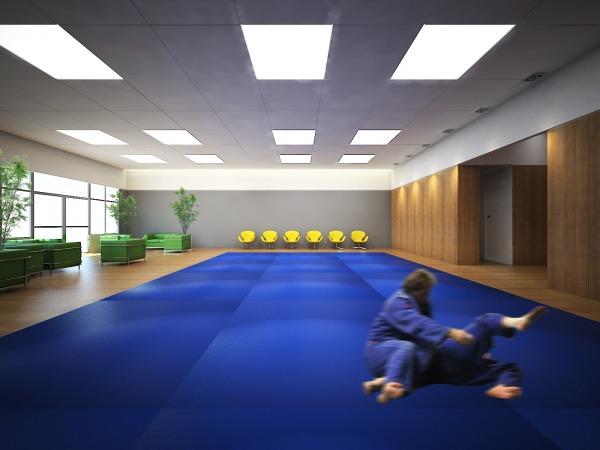 Image Brazilian Jiu Jitsu/Ma... (1)