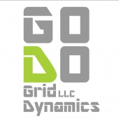 Grid Dynamics LLC