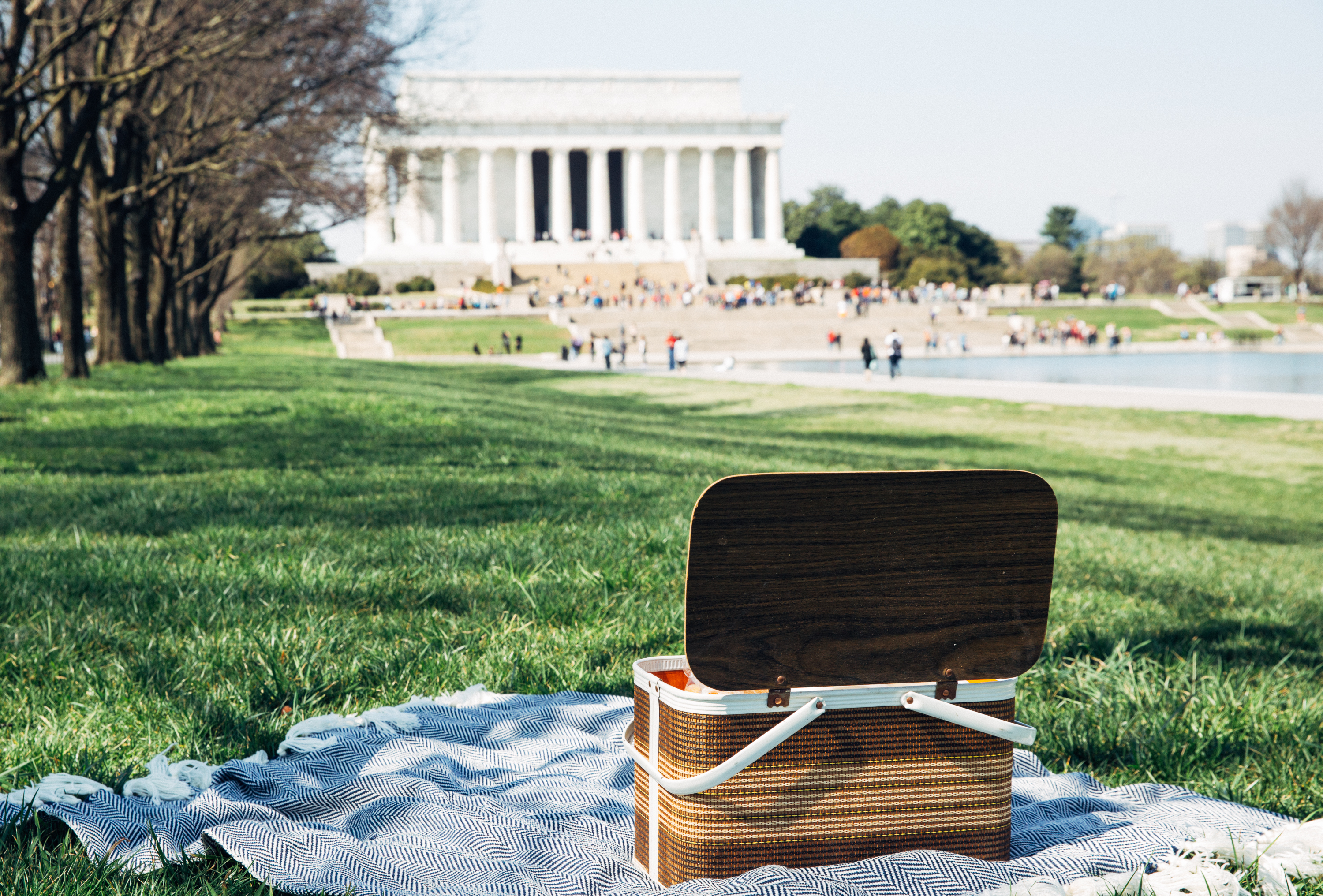 A picnic basket in DC