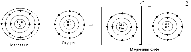 Questions and answers cbse icse solutions cbse icse study both magnesium atom and oxygen atom are chargeless what is the reason compare the bohr model of both atoms with the table ccuart Gallery
