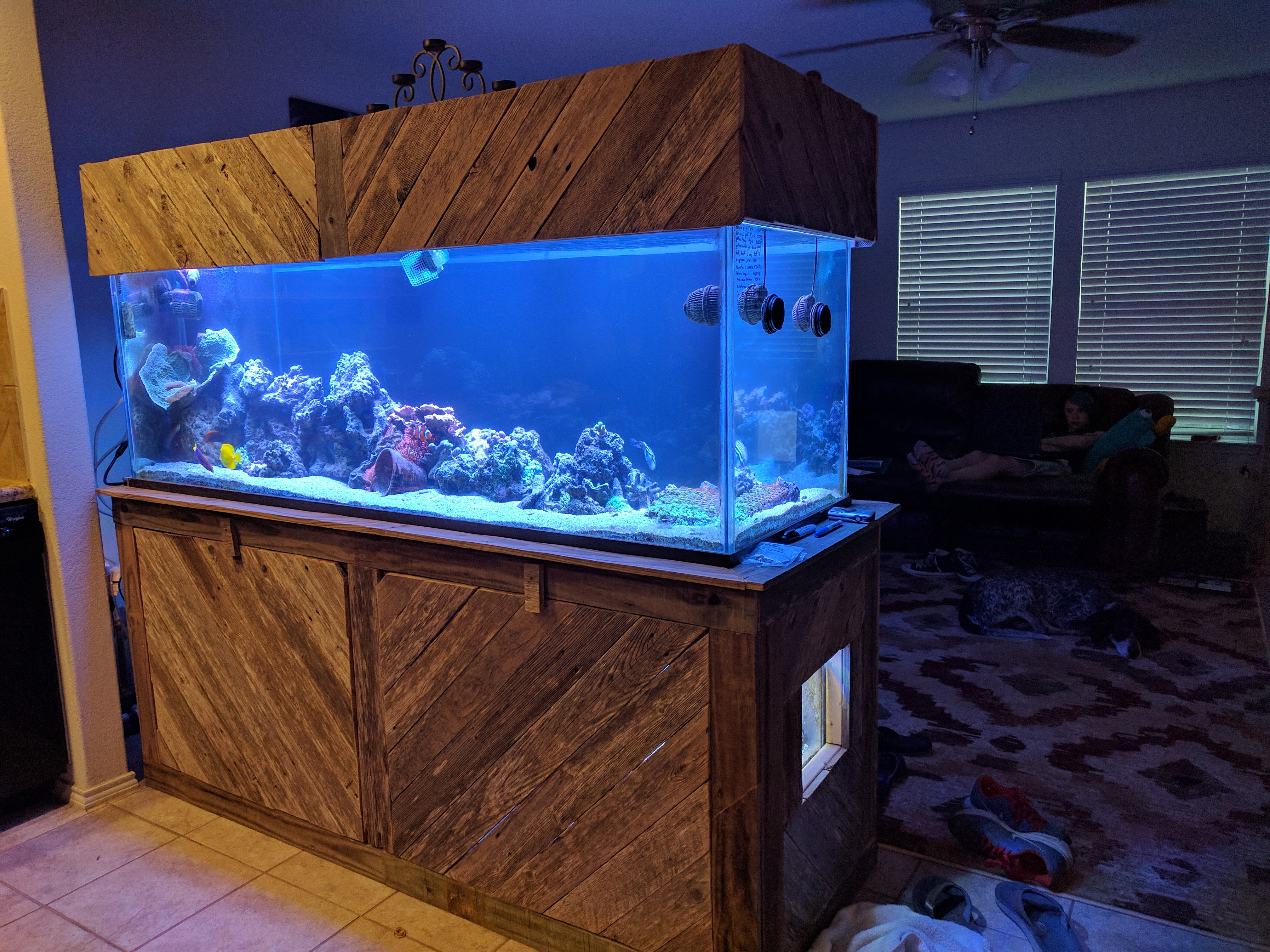 DIY water chiller - Do It Yourself - Austin Reef Club