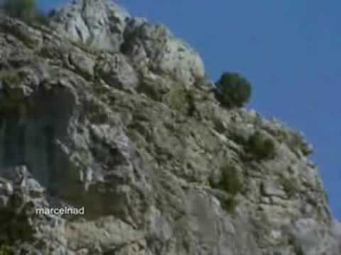 A Golden Eagle displays remarkable hunting strategy, preying on goats much larger than itself by throwing them off the cliff face. Filmed in Spain.