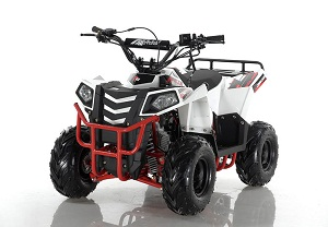 Buy New Apollo Mini Commander 110Cc Atv - Auto on Sale !