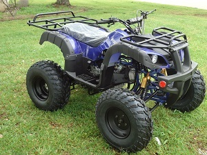 Buy New Rps Tk200 Atv, Electric Start, Fully Auto With Reverse For Sale