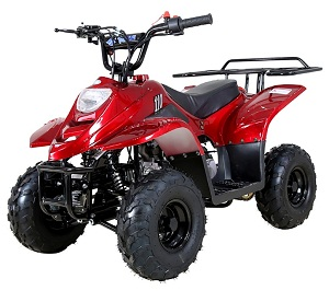 Buy TaoTao Boulder-B1 110cc ATV - Fully Assembled Version For Sale