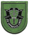 10th Special Forces Group (Airborne)/1st Battalion, 10th Special Forces Group