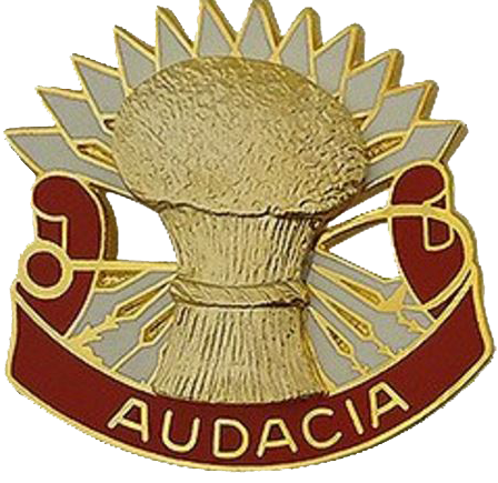 1st Battalion, 4th Air Defense Artillery