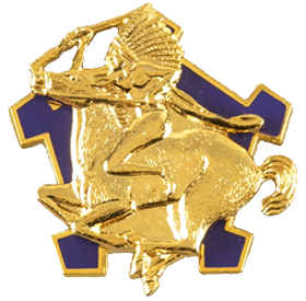 1st Squadron, 9th Cavalry Regiment (Air Cavalry)