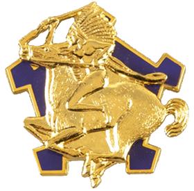 6th Squadron, 9th Cavalry Regiment