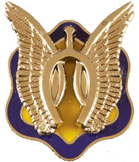 D Troop, 17th Cavalry