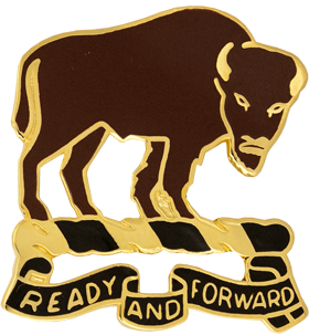 1st Squadron, 10th Cavalry Regiment