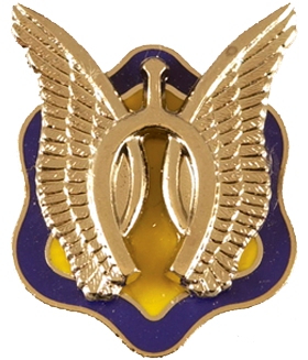 3rd Squadron, 17th Cavalry Regiment