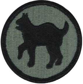 81st Regional Readiness Command (81st RRC)