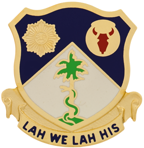 2nd Battalion, 134th Infantry Regiment