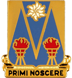 303rd Military Intelligence Battalion